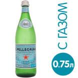 Вода S.Pellegrino минеральная природная лечебно-столовая газированная 750мл
