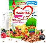 Каша Малютка Гречневая с лесными ягодами молочная 220г